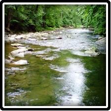 Big Elk Creek at Fair Hill near Elk Forge Bed and Breakfast Inn